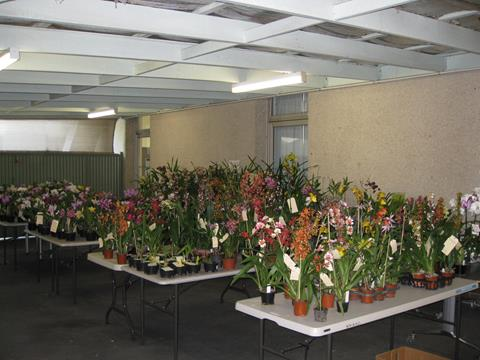 Section of plant sales